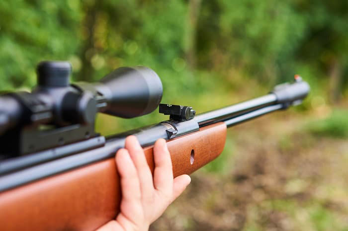 Hunting With a .22 Air Rifle